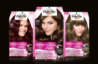 palette perfect gloss color